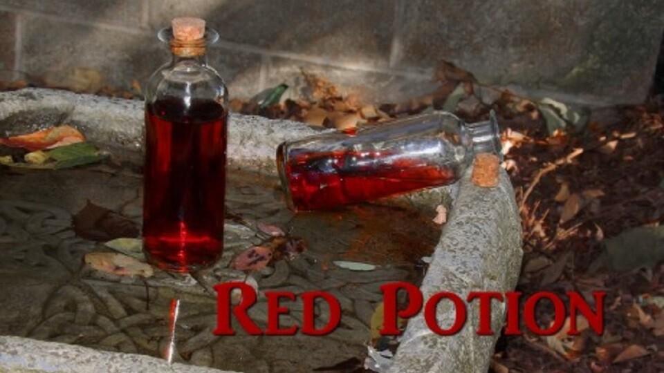 Zelda Red Potion